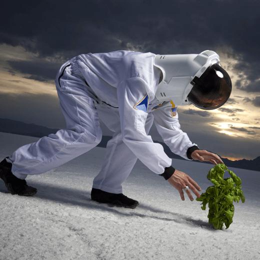 Des astronautes ont réussi à faire pousser des salades dans l'espace