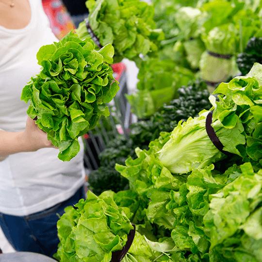 Douceur ou amertume : sachez choisir parmi les différentes variétés de salades en fonction de vos préférences