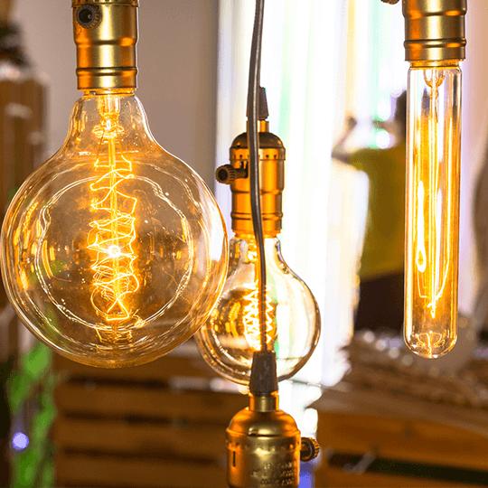 Savez-vous que l'on peut produire de l'électricité avec des endives ?