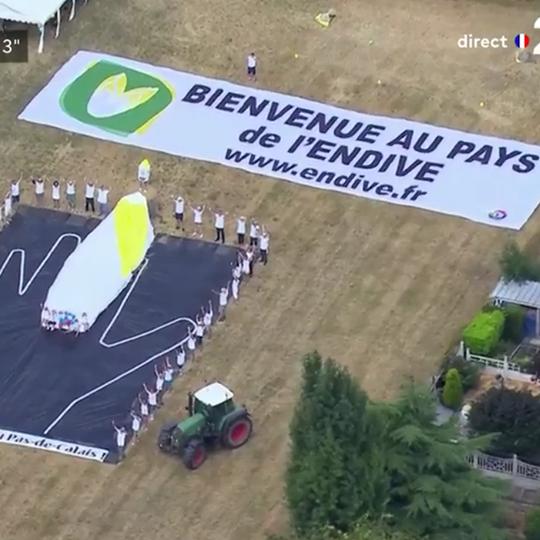 L'endive et le Tour de France