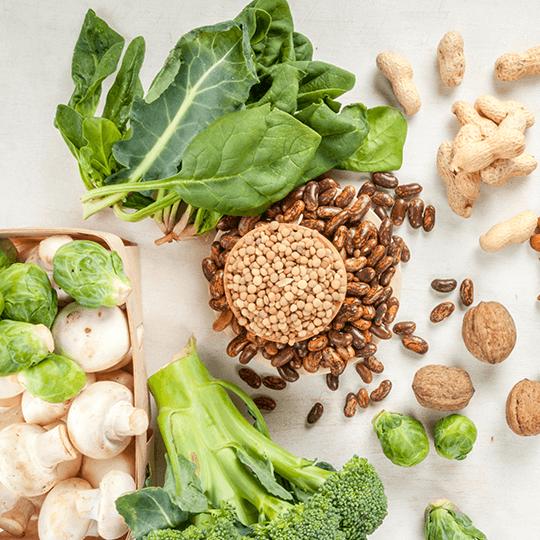 Protéines vertes : peuvent-elles remplacer la viande au quotidien ?